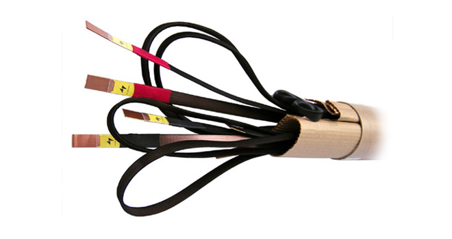 Model 4719 Speaker Cable (12 mm)