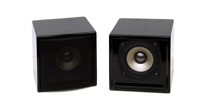 Model 4738 Fullrange Speaker System (8cm Single Driver)